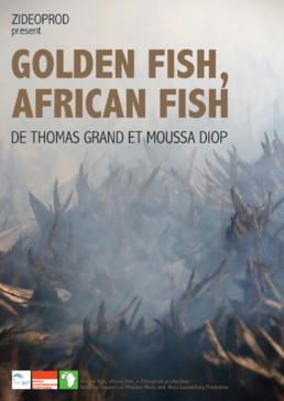 Golden fish african fish poisson d 39 or poisson africain - Poisson image ...